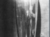 108 Maiastra 1919