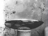 139 b Peste. Fish 1924