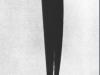 180 Pasarea in spatiu. Bird in space. 1931