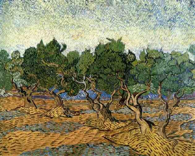1889 Les oliviers 1