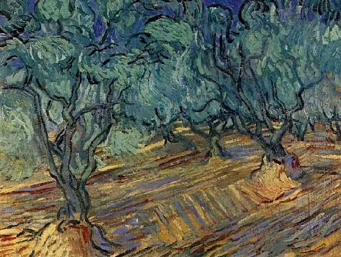 1889 Oliviers et ciel bleu