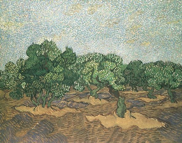 1889 Plantation d'oliviers 1