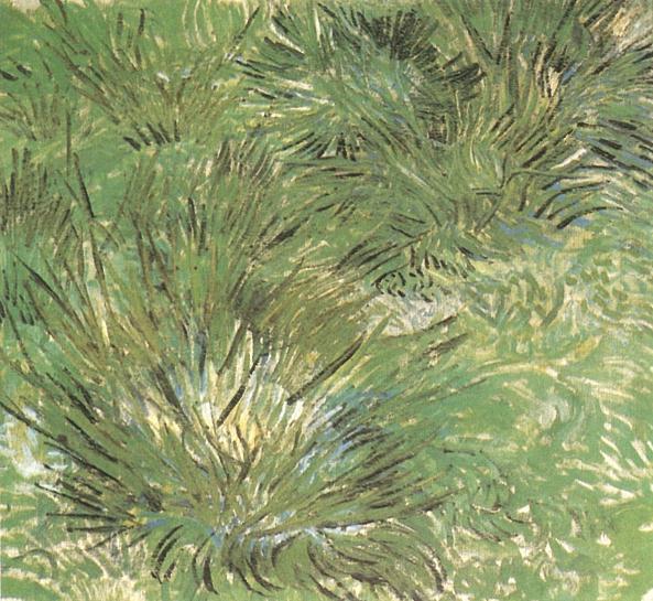 1889 Touffes d'herbe