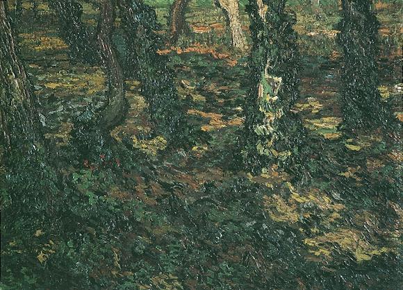 1889 Troncs et lierre