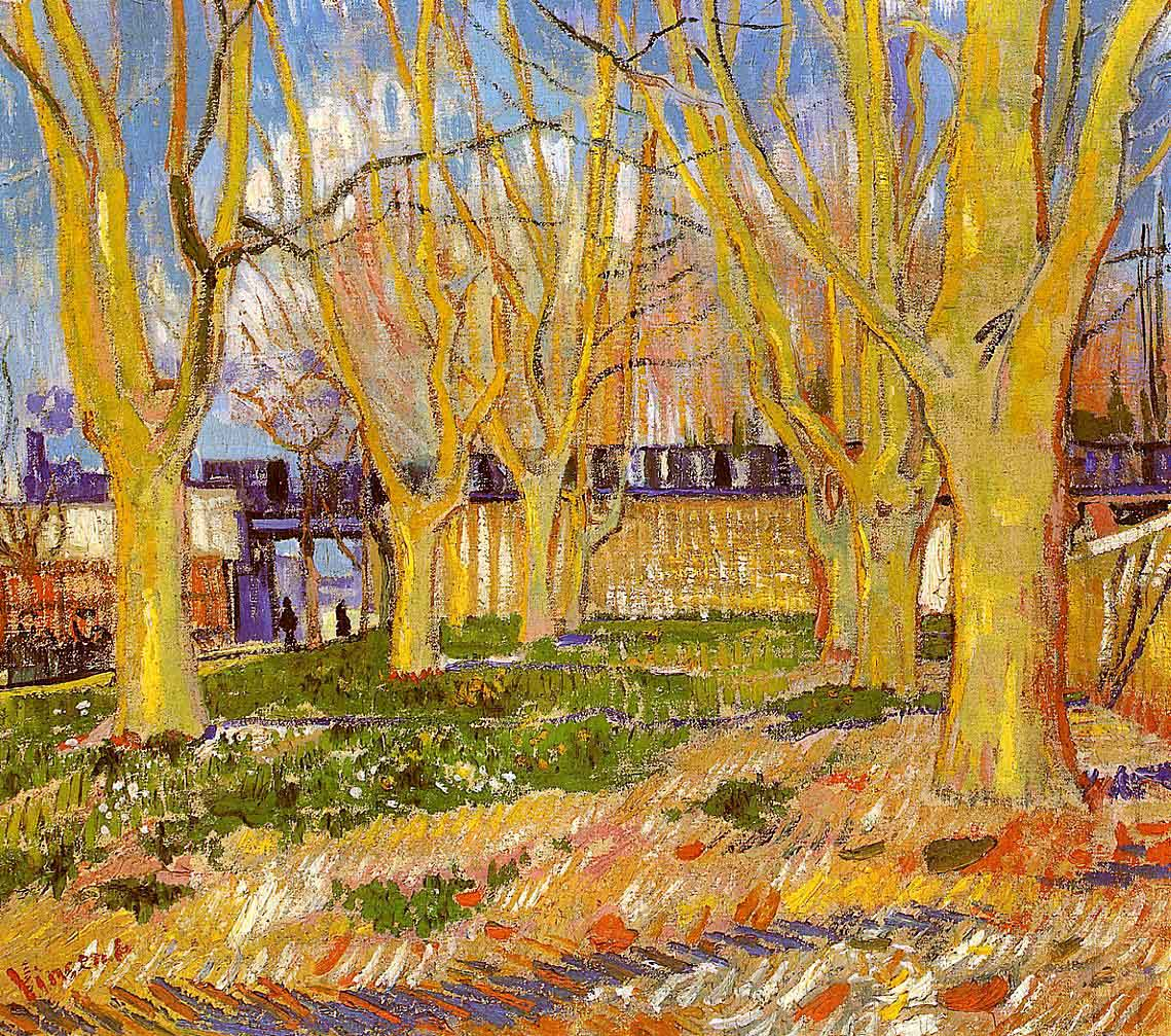 Avenue of Plane Trees near Arles Station