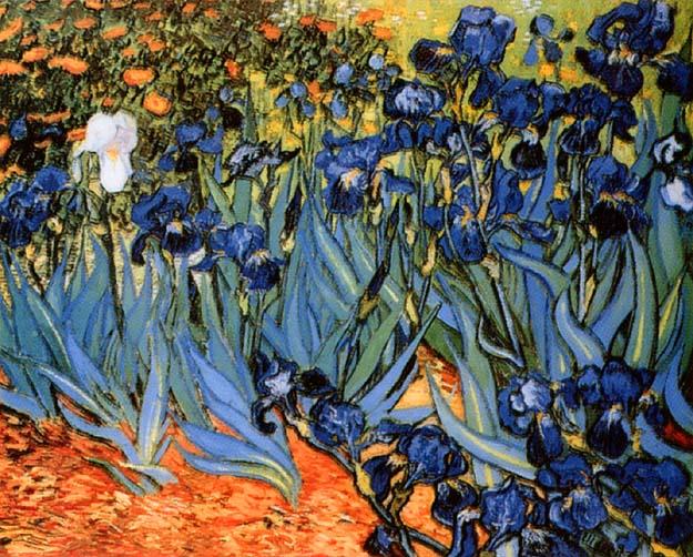 Garden_of_Irises,_1890