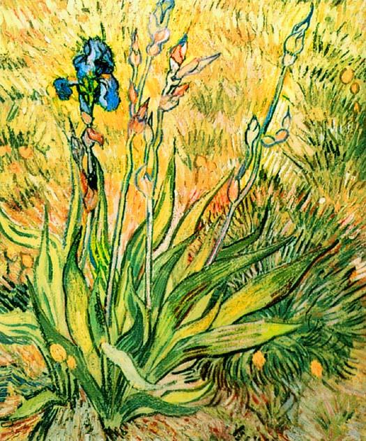 Irises,_1890_