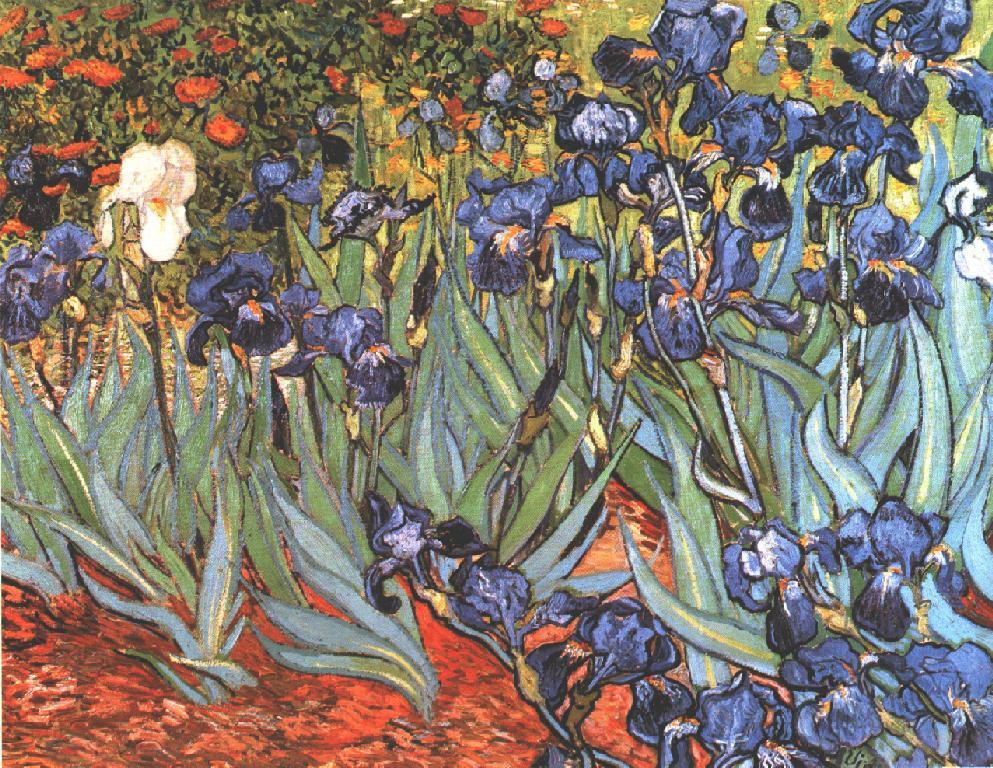 Irises,_1890___