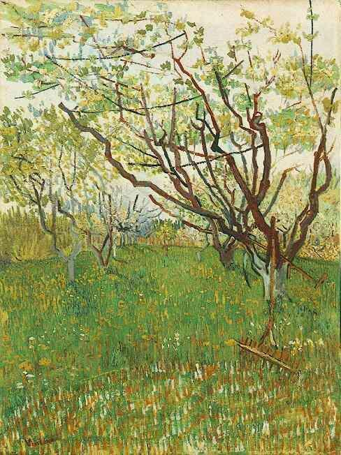 Orchard in Blossom 1