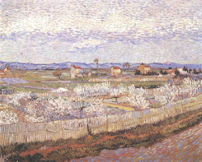 Peach_Blossum_in_the_Crau,_1889