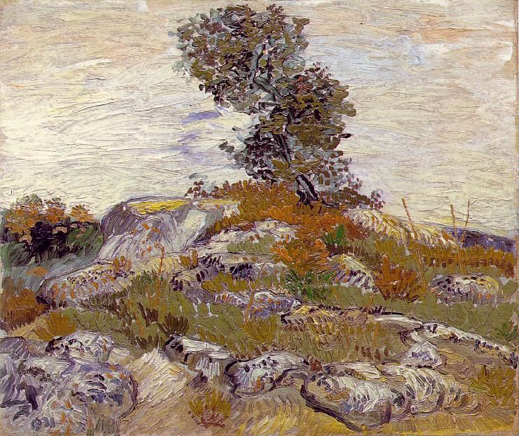 Rocks with Oak Tree