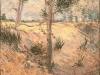 1887 Arbre dans un champ