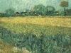 1888 Vue d'Arles avec iris