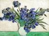 1890 Iris dans un vase