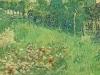 1890 Le jardin de Daubigny 2