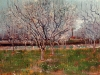 Orchard in Blossom 3
