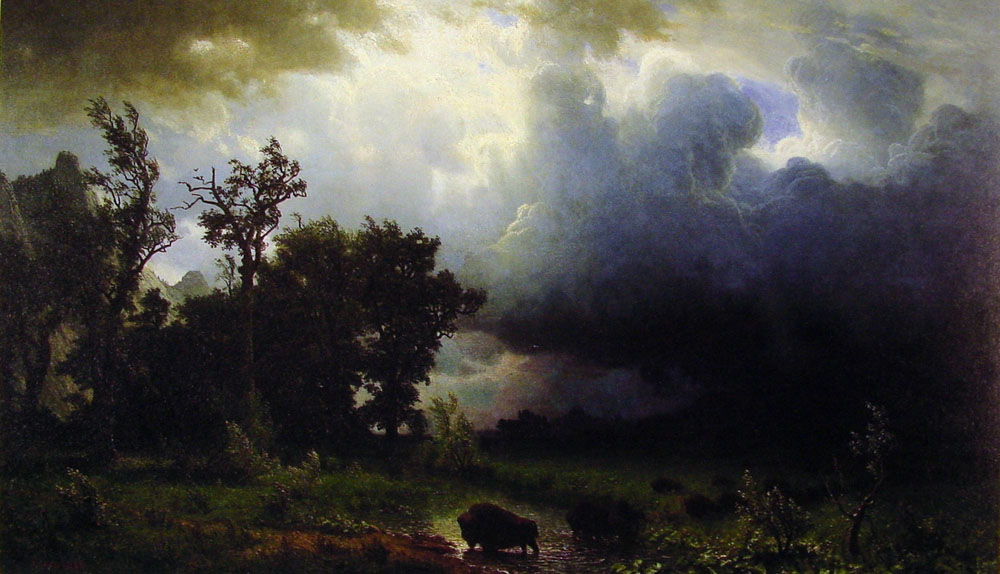 buffalo-trail-the-impending-storm