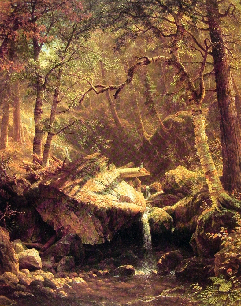 the-mountain-brook