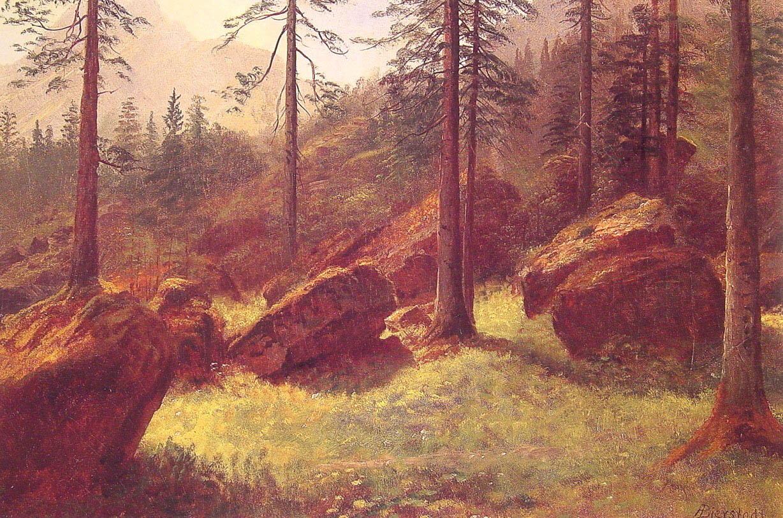 wooded-landscape