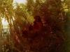 pan-amongst-the-reeds