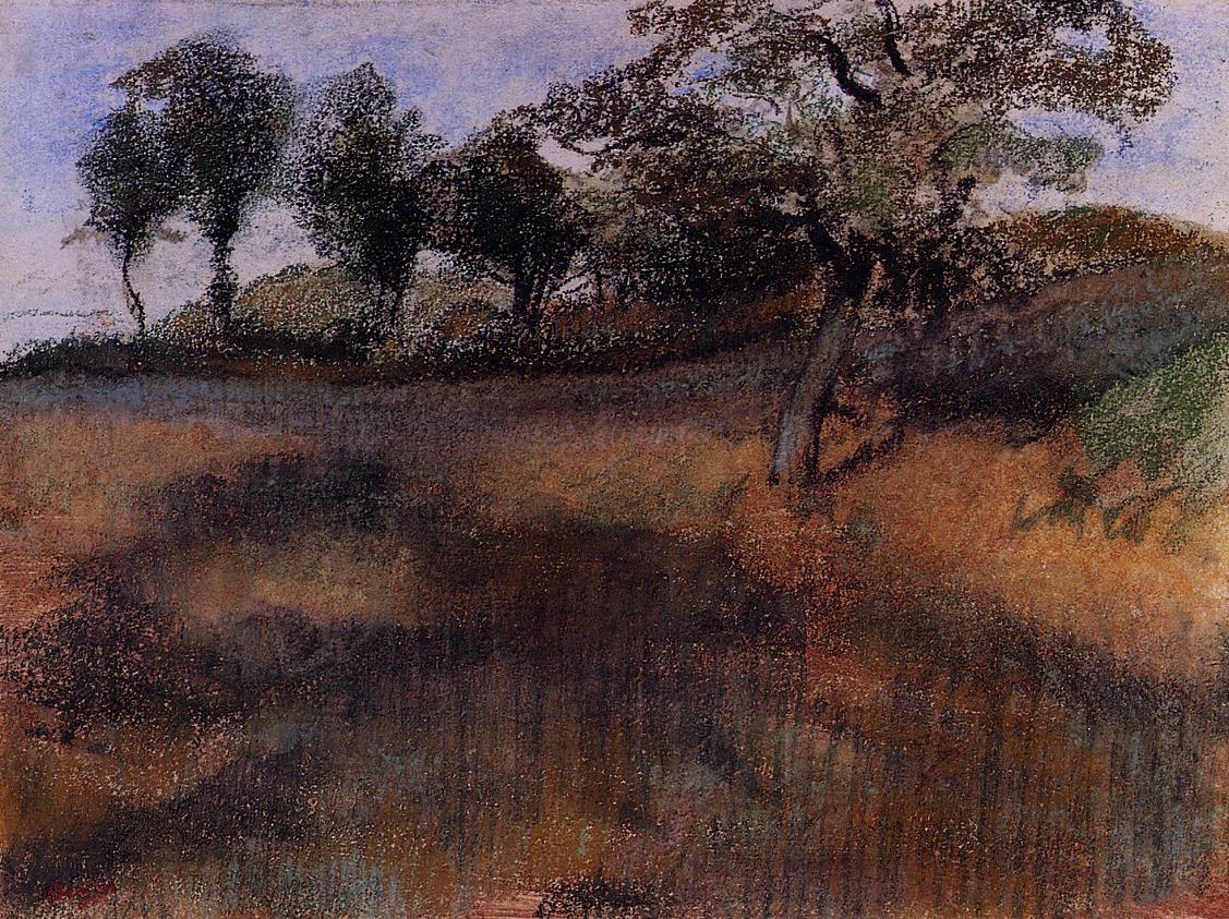 plowed-field