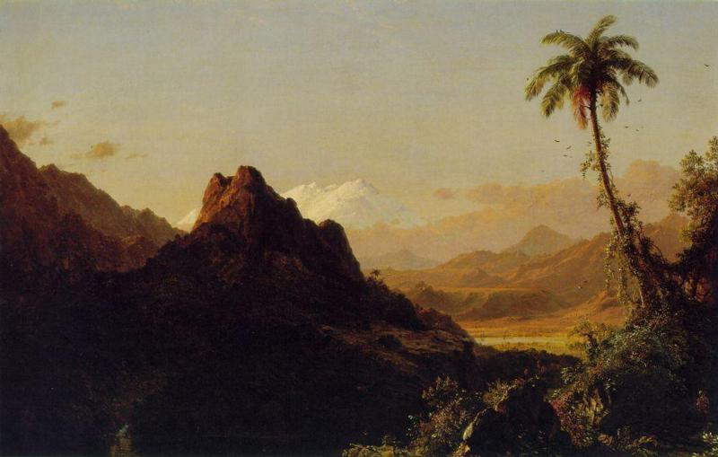 in-the-tropics