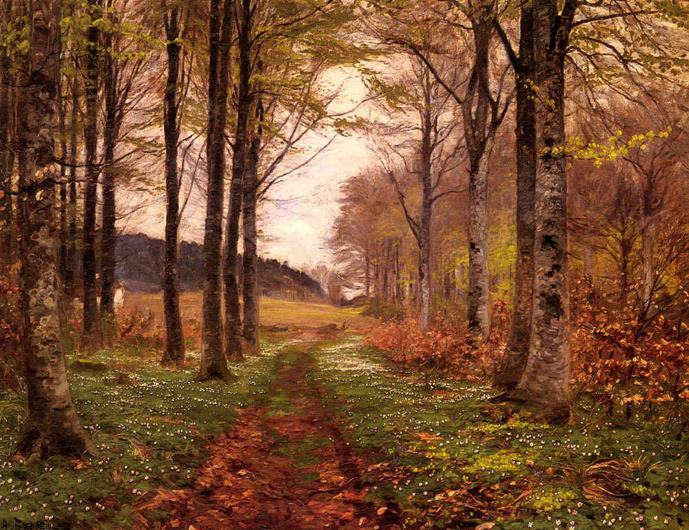 a-woodland-landscape