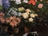 study-of-flowers