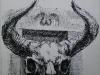 chir209m-skull