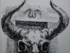 chir209m-skull1