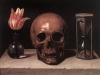 still-life-with-a-skull