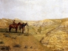 Cowboys in the Badlands