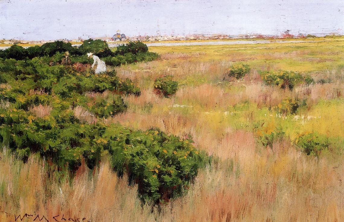 landscape-near-coney-island