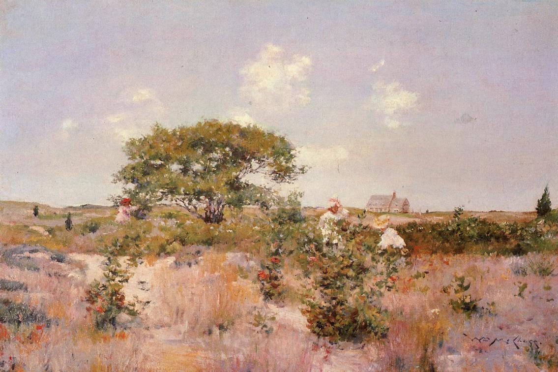 shinnecock-landscape-1